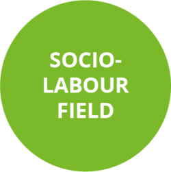socio-labour-field